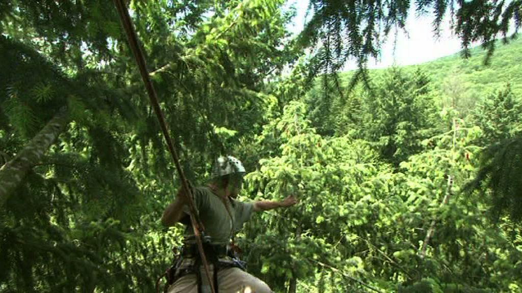 Mission Ibsca, vidéo profession grimpeur