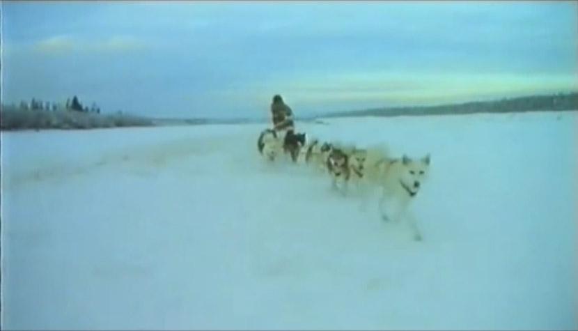 Voyageurs du froid