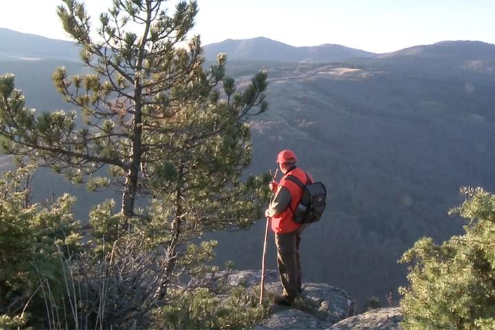 Visuel vidéo Comptage des cerfs au Mont Aigoual